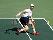 2016里約奧運會網球男單半決賽視頻:錦織圭VS穆雷