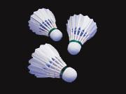 羽毛球毛片的分类与识别法