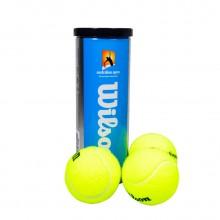 维尔胜 Wilson 三只装网球 WRT103700 澳网官方指定用球