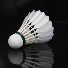李宁 A+90 羽毛球 中国国家队用球 稳定耐打 优选鹅毛